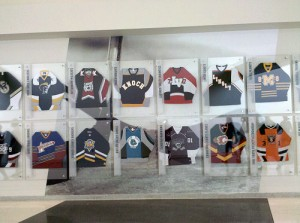 The hall of high school and amateur hockey.