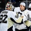 Vokoun and Fleury